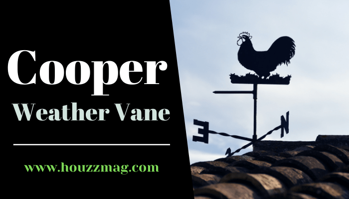 Cooper Weather Vane